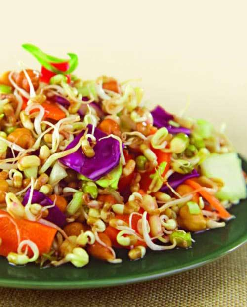 Sprouts and Vegetable Salad ( Weight Loss After Pregnancy )